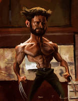The Wolverine by DevonneAmos