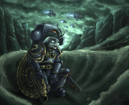 Pony Space Marine