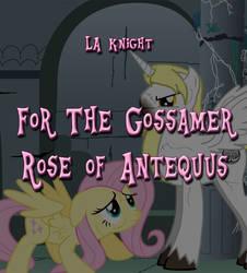 For the Gossamer Rose of Antequus