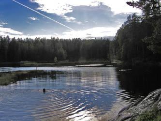 At the lake scene II by FeveredDreams
