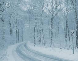 Snow by FeveredDreams