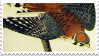 American Sparrow Hawk Audubon Stamp by gullaxy