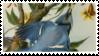 Blue Jay Audubon Stamp
