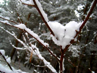 heart   . by maykhiu