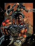 AOA Wolverine