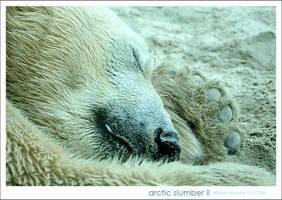 Arctic Slumber 2 by glarbinator