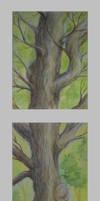 Three Tree by becsketch