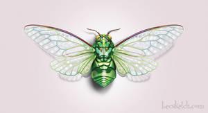 Cicada by becsketch