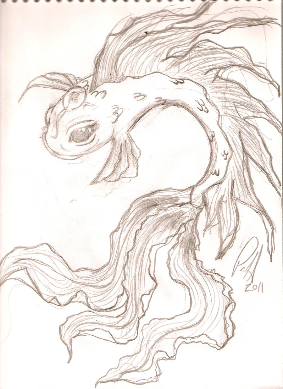 Koi fish sketch by pennywise3368 on deviantart for Koi fish sketch