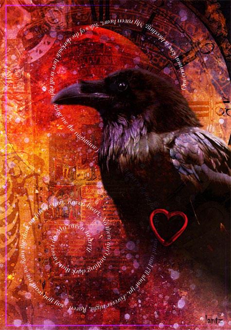 http://fc00.deviantart.net/fs9/i/2006/043/1/c/raven_heart_by_archeon.jpg