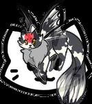 Mothcat ID #312