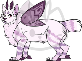 Mothcat ID #1078