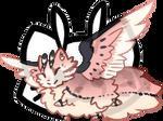 Mothcat ID #1415
