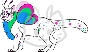 Mothcat ID #1428