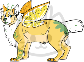Mothcat ID #1559
