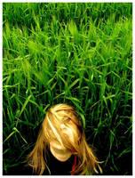 Grass by JeanFrancois