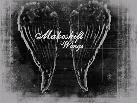 Makeshift Wings