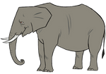 TDH Elephant