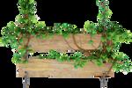 Lians witn wood sign PNG