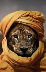 Lion by PlaviDemon
