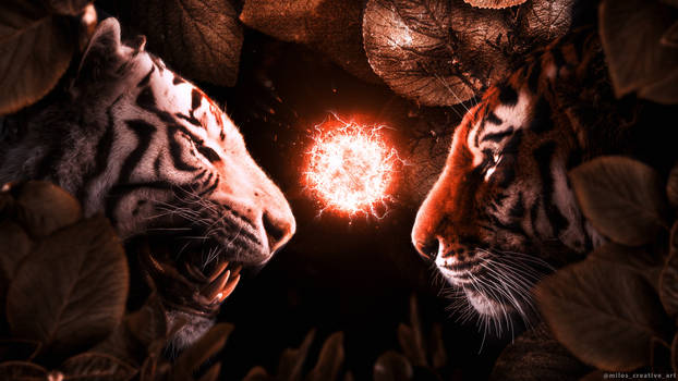 Beasts Fight
