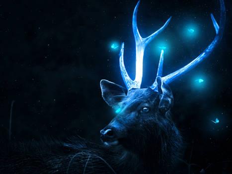 Glowing Deer