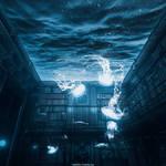 Library Aquarium