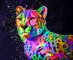 Colored Cheetah