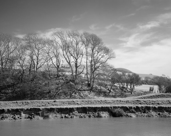 Trees and Caburn 0576 by filmwaster