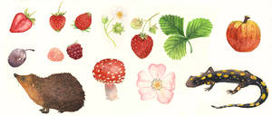 Fruit and Critters