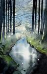 Dark Forest Study