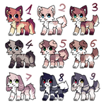 Feral adopts / Closed