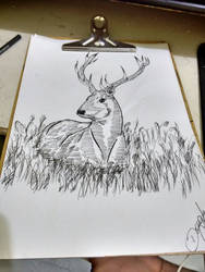Nature Deer by whoareyouintheballad