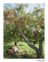 orchard jungle by ralamantis
