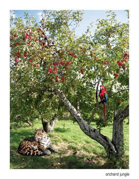 orchard jungle