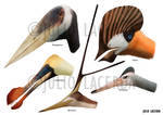 Pterosaur Menagerie II