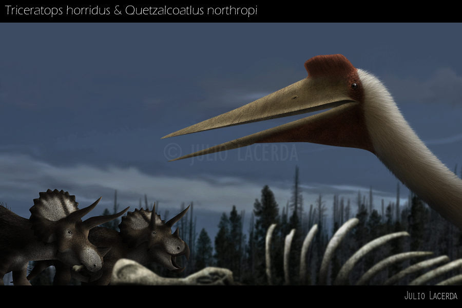 http://fc07.deviantart.net/fs71/f/2012/138/8/4/make_way_for_the_horns_by_karkajou1993-d4oync7.png