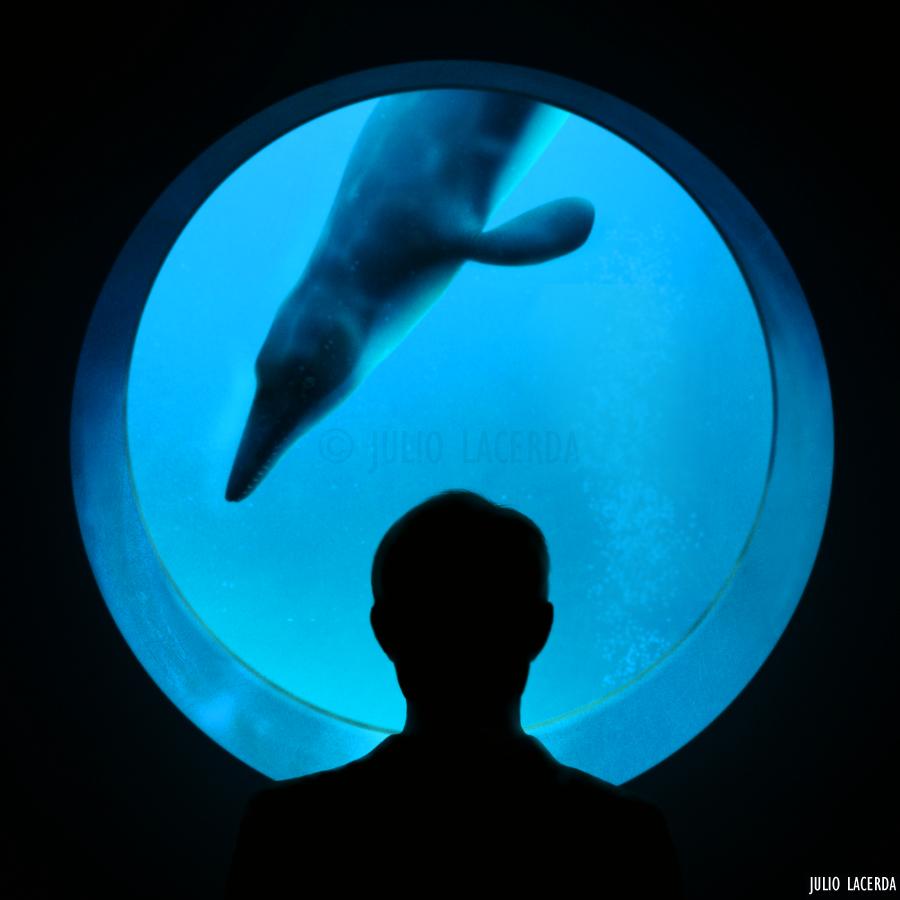 The Aquarium #3 by Julio-Lacerda