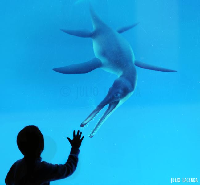 The Aquarium #4 by Julio-Lacerda