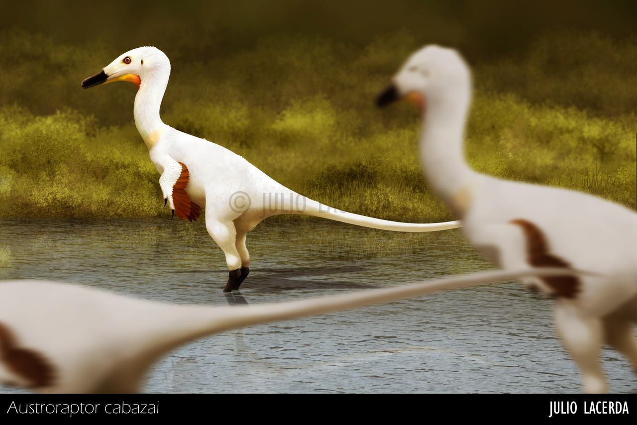 Photobombing Level: Cretaceous