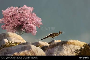 Magnolia by Julio-Lacerda