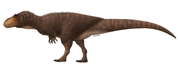 Guess the Theropod