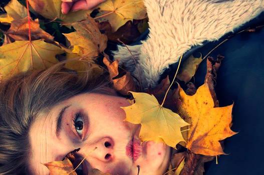 fall. autumn.
