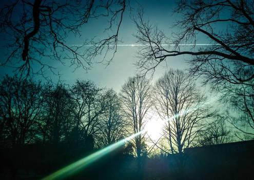 Magic of sunlight...