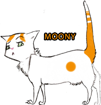 Gribouillis Moony__my_female_cat_by_Mamai