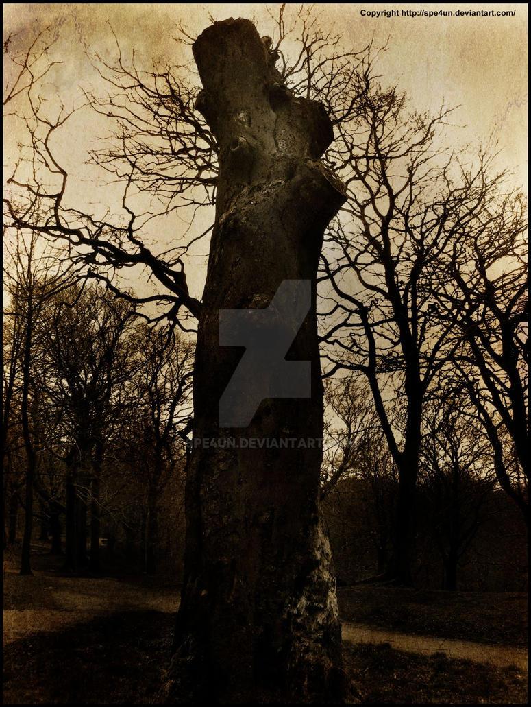 Burnt Sepia Tree Stalk by Spe4un