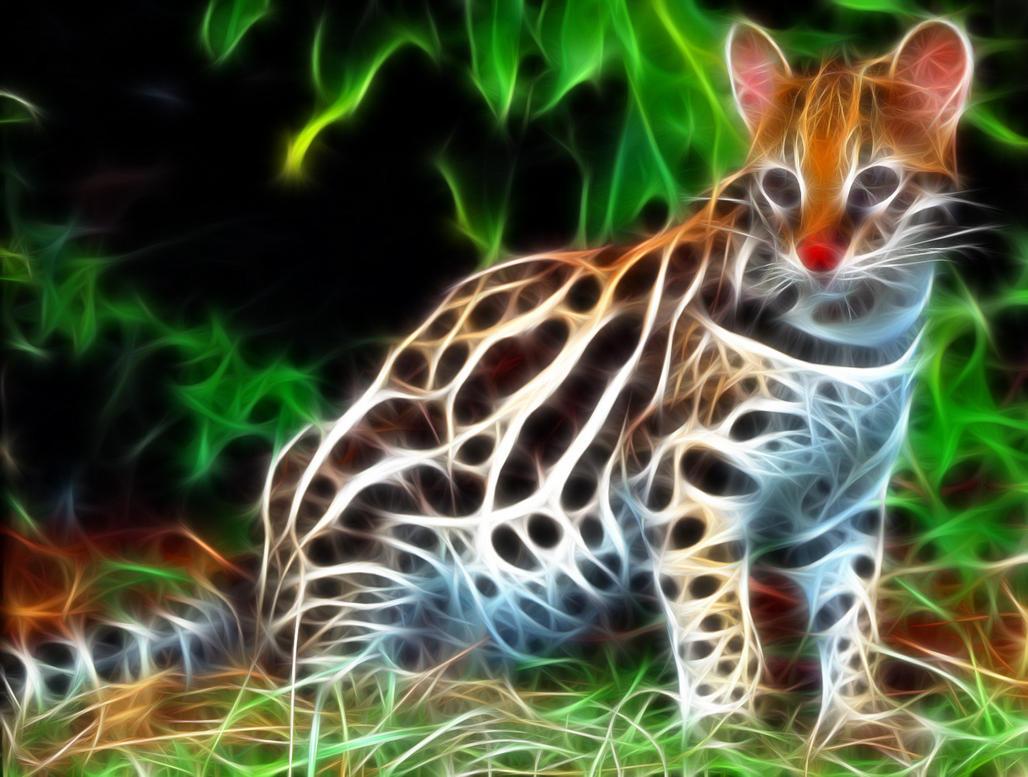 Cats that look like ocelots 11