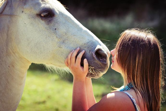 Игры для девочек ферма лошадей.
