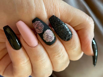 Pink Roses and Black