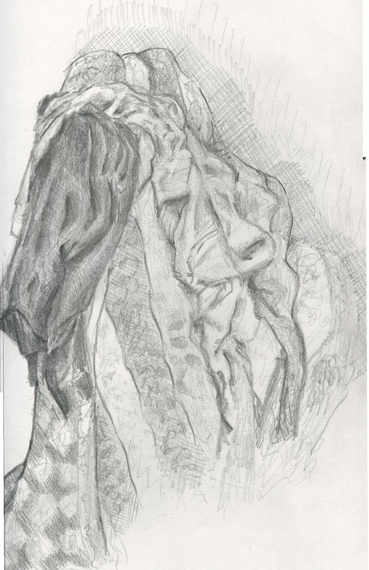[Image: fabric_study_by_ryanprovenzano-d6pzws6.jpg]